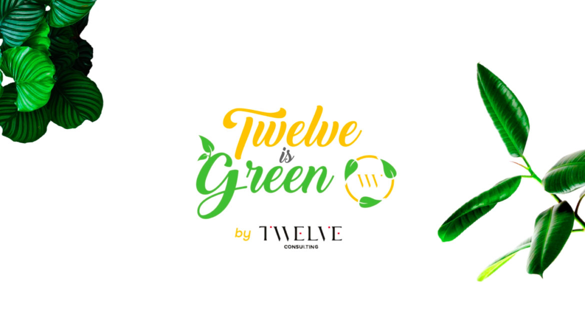 #12dumois - Twelve is Green by Twelve Consulting